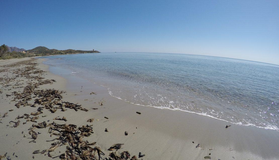 Spiaggia di Foxi Murdegu, Marina di Tertenia